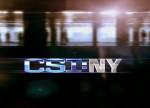 Digital Sons - Torchlight featured on CSI:NY